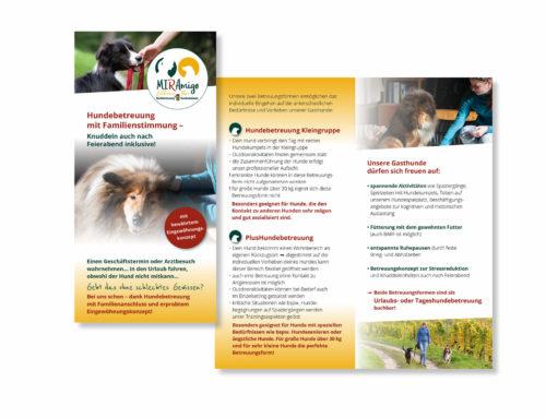 Flyerdesign für die MIRAMIGO-Hundeakademie